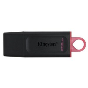 USB-флеш Kingston DataTraveler Exodia 256GB (DTX/256GB)