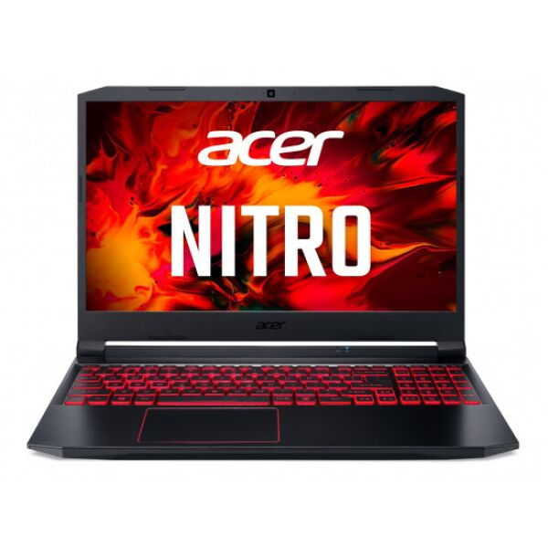 Ноутбук Acer Nitro 5 AN515-56-79DN NH.QAMEU.00M
